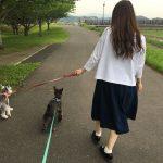 犬を散歩させる女性